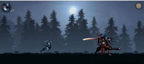 忍者武士暗影格斗传奇